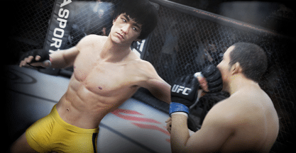 Ultimate Fighting Championship PS4 review
