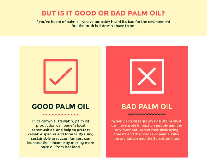 what is sustainable palm oil - infographic